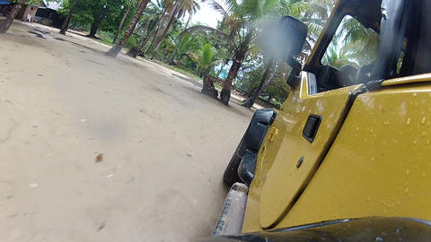 Driving through puddles under the palm trees Footage