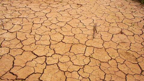 Dry Soil stock footage