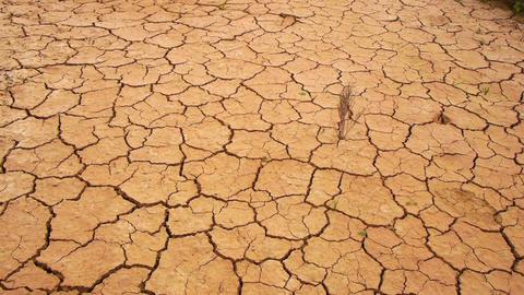Dry soil Footage