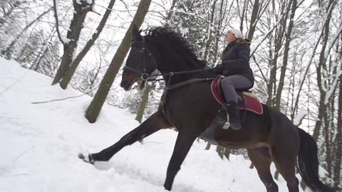 SLOW MOTION: Woman and her horse cantering in fres Footage