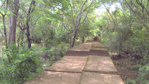 AERIAL: Stairs to ancient temples in Sri Lanka Footage