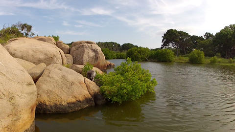 AERIAL: Low flight over rocks and river in Sri Lan Footage
