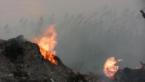 Burning wood smoking fire Footage