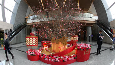 Decoration In Celebration Of The Chinese New Year stock footage