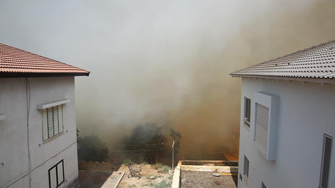 Forest fires in Kiryat Tivon, Israel Footage