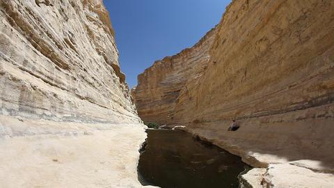 The wilderness of Ein Avdat in the Negev district  Footage