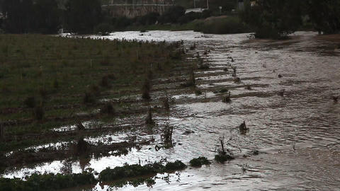 Brown floodwater flooded field after rain Footage