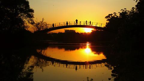 4K UHD Romantic sunset on bridge time lapse Footage
