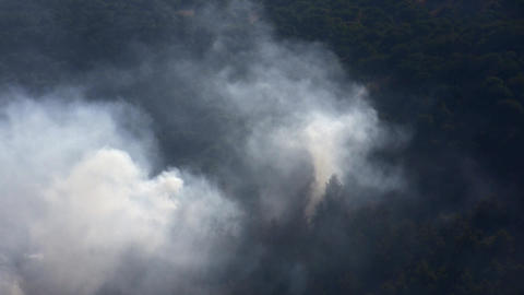 Forest Fire In The Mountains stock footage