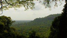 View from Phu Tok Mountain in Bueng Kan, Thailand Footage