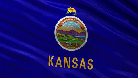 US state flag of Kansas seamless loop Animation
