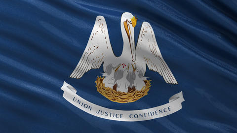 US state flag of Louisiana seamless loop Animation
