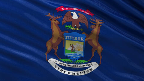 US state flag of Michigan seamless loop Animation