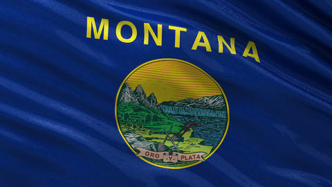 US state flag of Montana seamless loop Animation