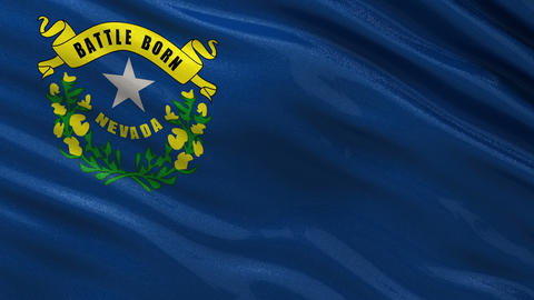 US state flag of Nevada seamless loop Animation