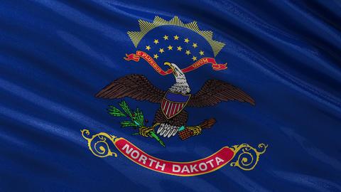 US state flag of North Dakota seamless loop Animation