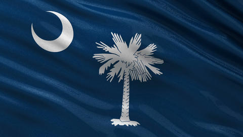 US state flag of South Carolina seamless loop Animation
