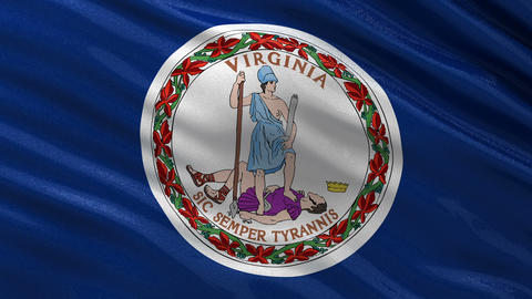 US state flag of Virginia seamless loop Animation