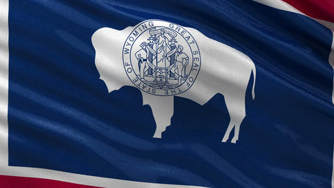 US state flag of Wyoming seamless loop Animation
