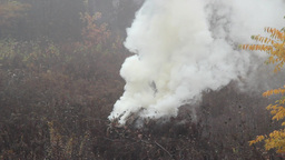 Smoke and fire near the forest - danger of forest  Footage