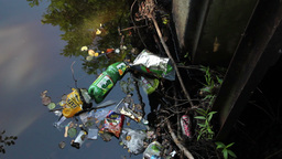 Rubbish in the water. Water pollution Live Action