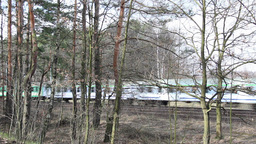 Intercity train in Poland. View from the forest Live Action