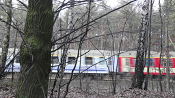 Intercity train in Poland. View from the forest Footage