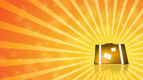 Summer Suitcase HD Loop Stock Video Footage