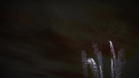 (1193) Fireworks Celebration Sunset Clouds Family Stock Video Footage