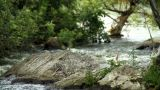 River Background stock footage