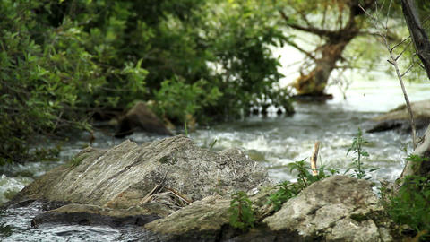 River background Stock Video Footage