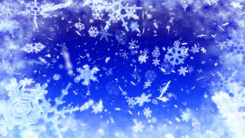 Snow Flake AL2 Stock Video Footage