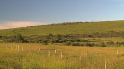 HD2008 8 1 59 prairie hills Stock Video Footage