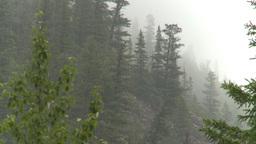 HD2008-8-1-71 rain mtn Stock Video Footage