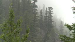 HD2008-8-1-71 rain mtn Footage
