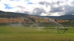HD2008-8-2-45 farm sprinkler Stock Video Footage