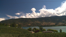 HD2008-8-2-69 drive okanagan orchards Stock Video Footage