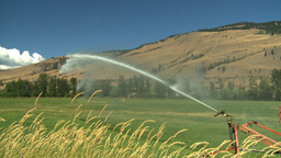HD2008-8-3-4 farm sprinkler Stock Video Footage