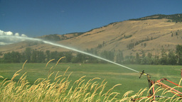 HD2008-8-3-4 farm sprinkler Stock Video Footage