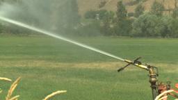 HD2008-8-3-6 farm sprinkler Stock Video Footage