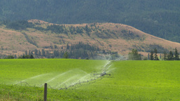 HD2008-8-4-43 farm irigation Stock Video Footage