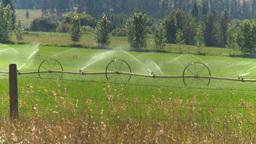 HD2008-8-4-45 farm irigation Stock Video Footage
