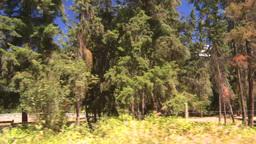 HD2008-8-4-53 drive dry scrubland Footage