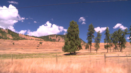 HD2008-8-4-61 drive dry scrubland Stock Video Footage