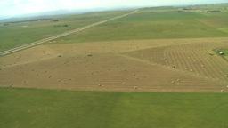 HD2008-8-5-37 aerial landing runway Stock Video Footage