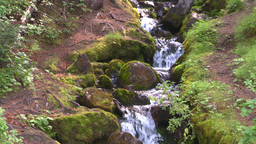 HD2008-8-7-31 mossy mtn stream Stock Video Footage