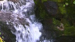 HD2008-8-7-35 mossy mtn stream Stock Video Footage