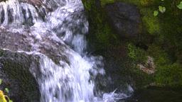 HD2008-8-7-35 mossy mtn stream Footage