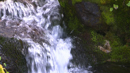 HD2008-8-7-35 mossy mtn stream Stock Video Footage