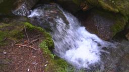 HD2008-8-7-39 mossy mtn stream Footage